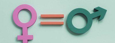 Pla igualtat de genere consell comarcal ajuntament la cellera (1)